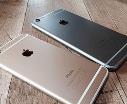 Apple może pobić zeszłoroczny rekord sprzedaży dzięki nowym iPhonom