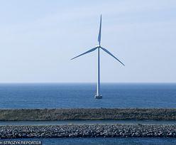 Kto rzeczywiście zainwestuje w farmy wiatrowe na Bałtyku?