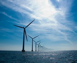 """""""Większe, lepsze, tańsze"""". Kolejne rekordy turbin wiatrowych"""