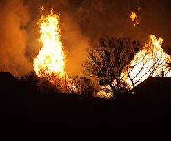 Pożar gazociągu w Murowanej Goślinie. Będzie pomoc finansowa dla poszkodowanych