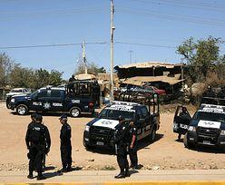 Meksykańska policja aresztowała obcokrajowców