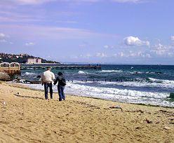 Ministerstwo Skarbu Państwa chce wydzierżawić ośrodek nad Morzem Czarnym