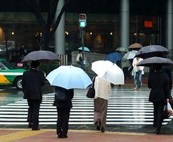 Ruch drogowy we Włoszech. Alarmujące dane