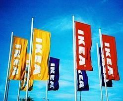 IKEA testuje nowy format sklepu. Zmiany dla klientów