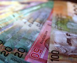 Gwarantowana pensja dla bezrobotnych. Rewolucyjny program w kolejnym kraju