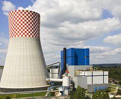 Tauron ma nowy kontrakt. Sprzeda energię za 283 mln zł