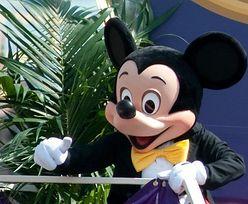 Rekordowe wyniki Disneya. A akcje wciąż rosną