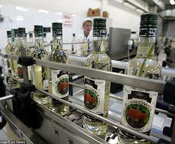 Najwięksi producenci wódki w Polsce nie płacą CIT. Branża broni się, że interes jest mało zyskowny