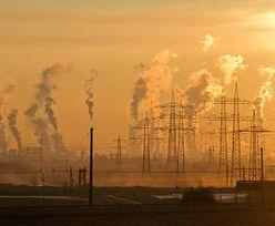 W Europie banki i ubezpieczyciele odwracają się od węgla. W otulonej smogiem Polsce - to nie tak oczywiste