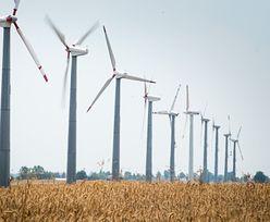 Tauron zbuduje magazyn energii z wiatraków. Amerykański program zacznie się w Lipnikach