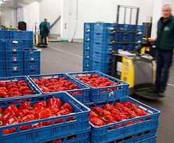 Są pierwsze efekty sankcji w rosyjskich sklepach