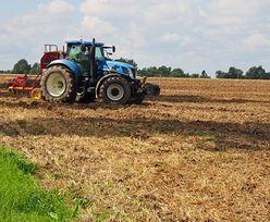 """""""Plan dla wsi"""". Szczegóły rządowego planu wsparcia rolnictwa"""