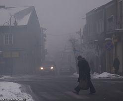 Tauron będzie walczyć ze smogiem. Wyda na to ćwierć miliarda złotych