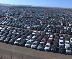 Tysiące bezużytecznych Volkswagenów na lotnisku. To teraz największy parking świata