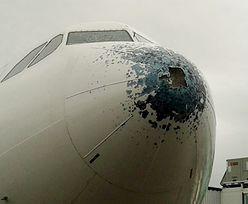 Wypadek samolotu w Argentynie