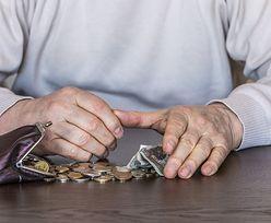 Pracownicze plany kapitałowe mają zapewnić wyższe emerytury. Liczymy, o ile