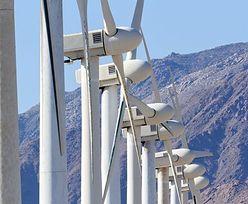 Biogazownie mogą być przyszłością rynku odnawialnych źródeł energii