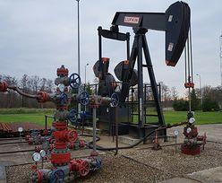Ceny ropy naftowej wystrzeliły. Padły ważne deklaracje