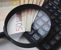 Zryczałtowany podatek dochodowy. Kto może z niego skorzystać?