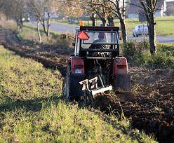 Rolnictwo w Polsce. Będzie można dorobić bez utraty ubezpieczenia z KRUS