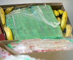 Kokaina nie tylko w bananach. Oto drogi, którymi narkotyk wędruje do Polski