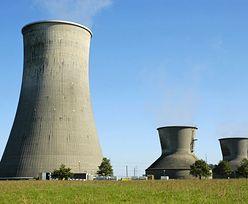 Elektrownia atomowa w Polsce: prezesi mogli nieźle zarobić