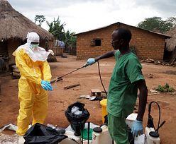 Epidemia eboli. Mali w Afryce Zachodniej krajem wolnym od tej choroby