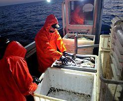 KE chce ograniczenia połowów dorsza. Rybacy: to już ósmy rok redukcji