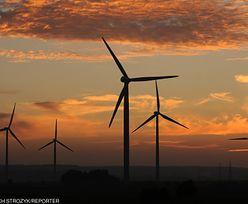 Fiasko odnawialnej energii w Polsce. Inwestycje na zatrważająco niskim poziomie