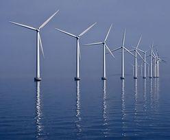Energa ma ugodę z farmą wiatrową. Strat nie będzie