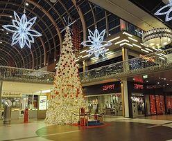 Najwięcej na prezenty wydadzą w tym roku Brytyjczycy, Polacy na 9. miejscu