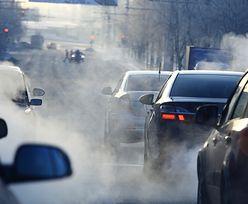 WHO ogłasza nowe normy smogu. Polska będzie miała kolejny problem