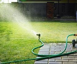 Zaczyna brakować wody? Pojawiają się zakazy podlewania