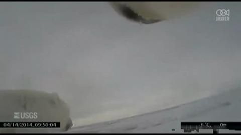USGS ujawnia nagranie zrobione kamerą z karku niedźwiedzia polarnego