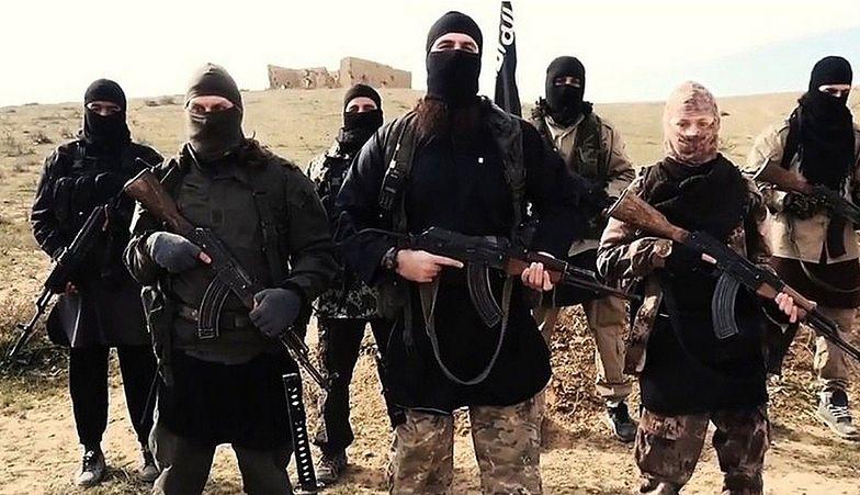 Państwo Islamskie ma w budżecie 2,2 mld dolarów. Wszystko dzięki nafciarzom, bankierom, chirurgom i paserom proroka