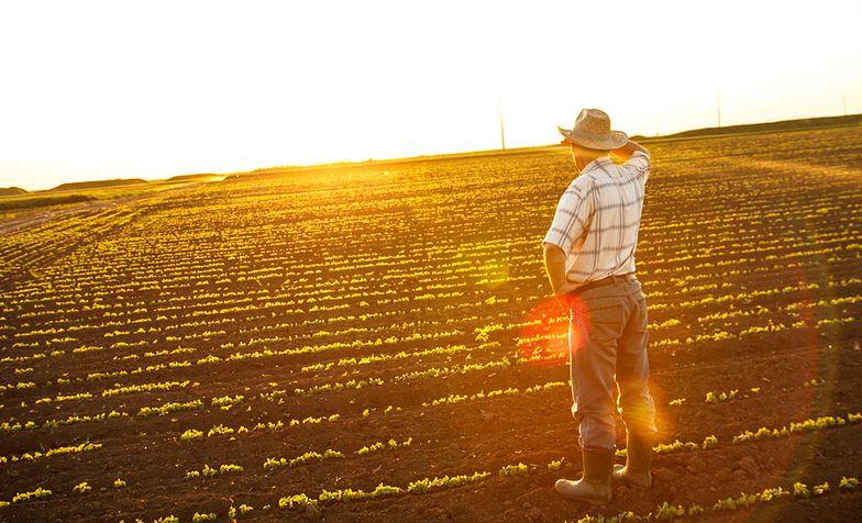 Obrót ziemią rolną. Jaki efekt nowych przepisów?