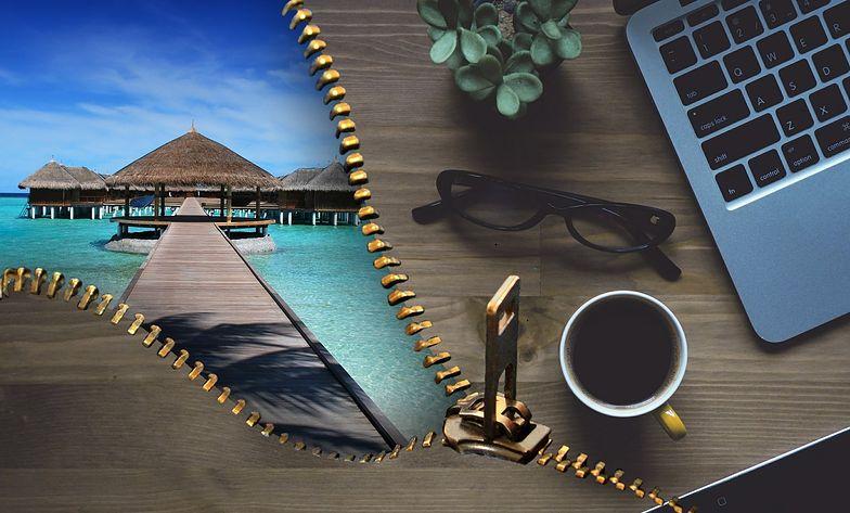 Jak znaleźć staż i praktyki na wakacje?