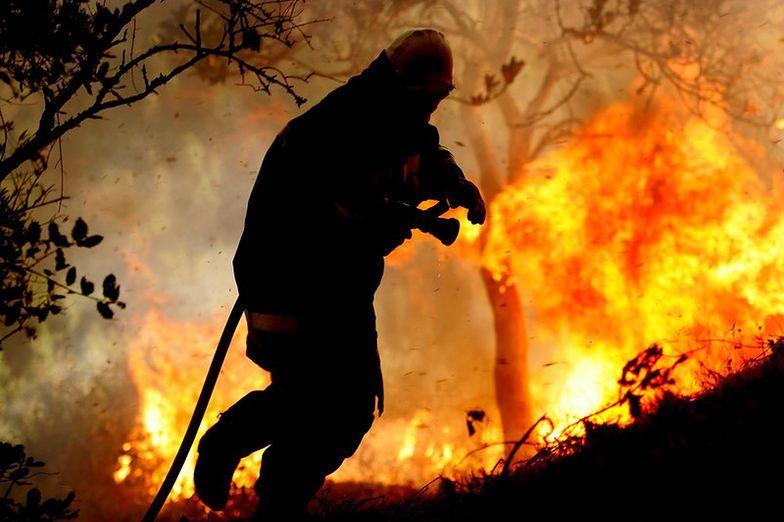 Armia Australii bada, czy ćwiczenia wojskowe nie wywołały pożaru
