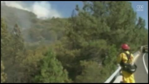 Pożar w okolicy Yosemite; ewakuowano mieszkańców ponad 300 domów