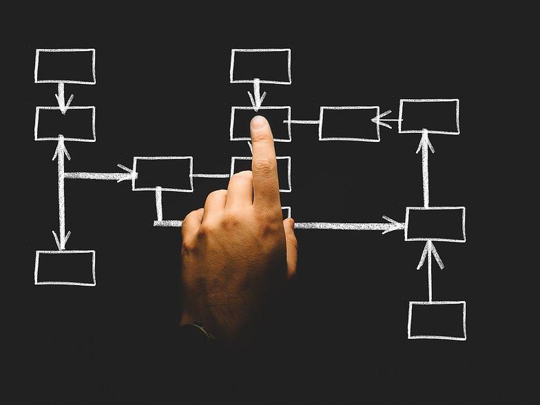 Kody PKD pozwalają na określenie profilu działalności danej firmy