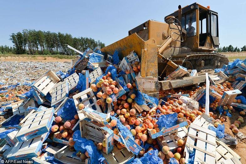 W Polsce wciąż nie ma regulacji prawnych, które miałyby przeciwdziałać marnowaniu żywności