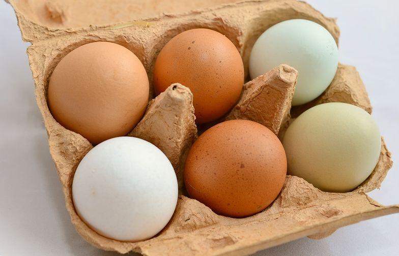 W Polsce rocznie produkuje się około 9 mld 100 milionów sztuk jaj