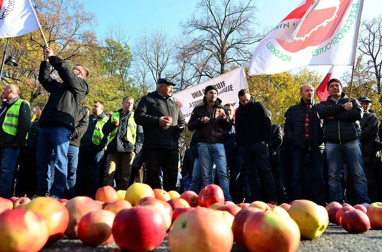 Polscy sadownicy mogą dostać rekordowe wsparcie UE