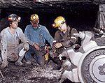 """Górnicy z """"Halemby"""" zginęli przez zaniedbania"""