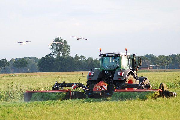 Kredyt dla rolników na dowolny cel w Nest Banku