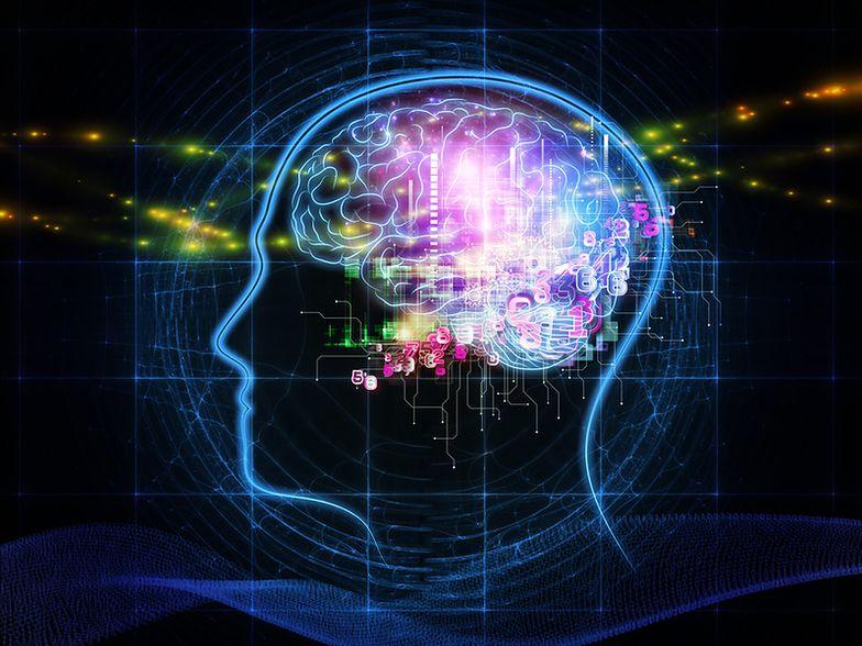 Jak deep learning zmienia codzienność branży reklamowej?