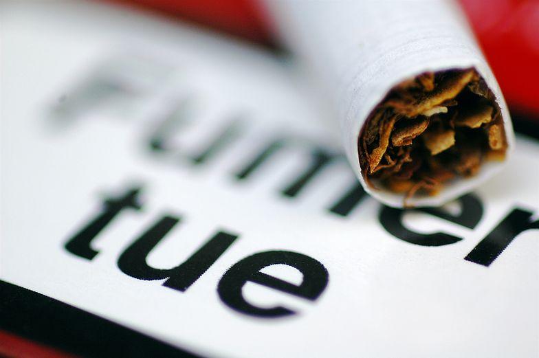 Dyrektywa tytoniowa. Przemysł w Polsce boi się nowych wytycznych w sprawie opakowań na papierosy