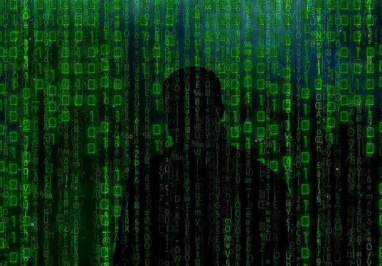 DDoS najtańszą i najbardziej paraliżującą formą ataku w sieci