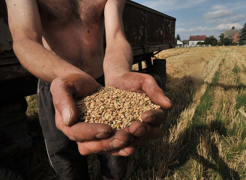 Bruksela chce pomóc Ukrainie. Polscy rolnicy nie chcą za to płacić i zapowiadają protesty