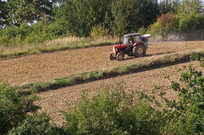 Od 1 grudnia rolnicy dostaną pozostałą część pieniędzy z dopłat bezpośrednich.